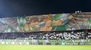Страхотна хореография от феновете на Лудогорец преди мача с Интер
